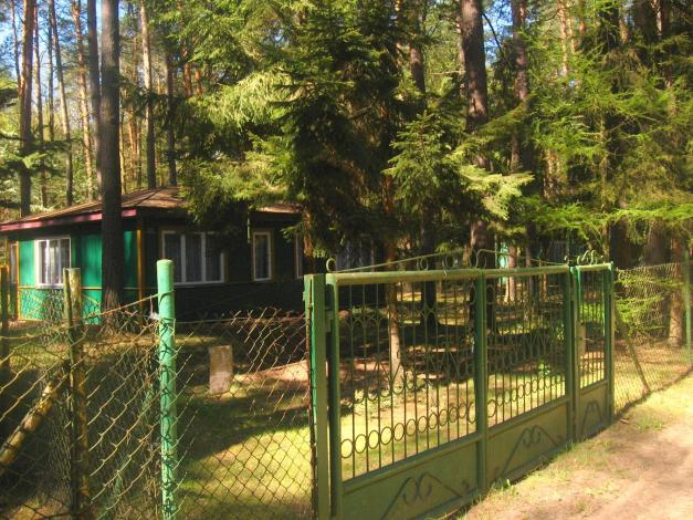 9364-charakterystyczne-zielone-domki_24145068230_o